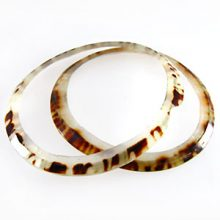 Limpet shell sliced rings