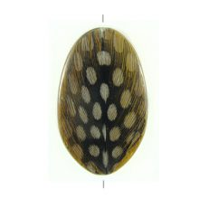 Robles wood resin embedded with guinea fowl feather