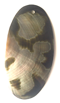 Blacklip oval 93mm moon design wholesale
