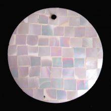 Chamber nautilis shell round 40mm