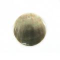 Blacklip round 25mm plain wholesale pendant