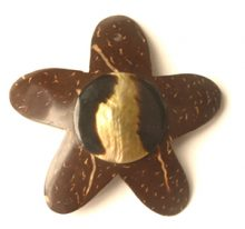 Coconut shell starfish shape 58mm with brownlip shell