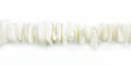Fragum shell or white clam shell crazycut beads white