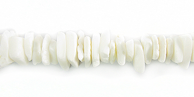 Fragum shell crazycut white wholesale beads