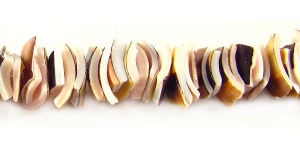 Luanos shell crazycut everlasting beads