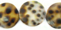 20mm flat round tiger cowry wholesale beads