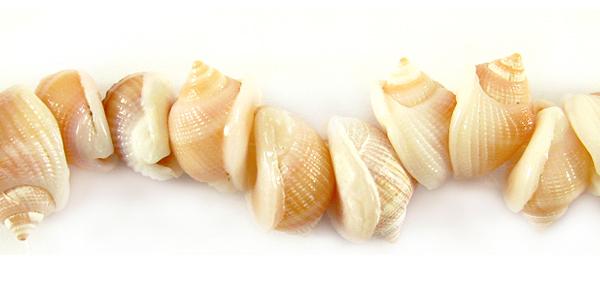 Orange tapok shell