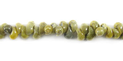 Green mongo shell