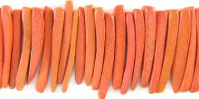 Coconut shell tusks beads dyed orange