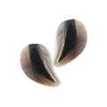 Hammershell half heart design earring