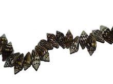 Tiger nassa shell wholesale beads